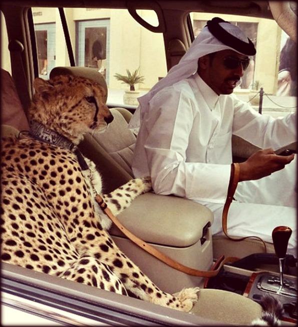 Dubai-Luxury-03