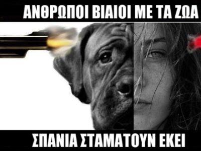 Η κακοποίηση ζώων συνδέεται με κακοποίηση ανθρώπων