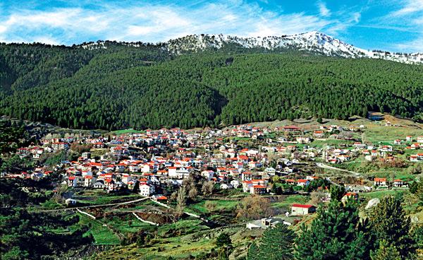 Σαμαρίνα, Γρεβενά