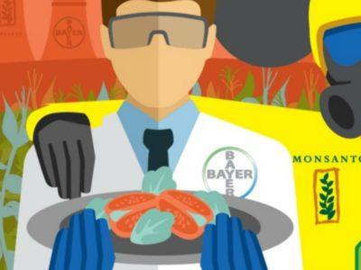 Η Monsanto έχει θάψει όσες μελέτες δεν βόλευαν