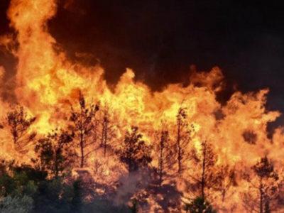 Καύσωνας, ξηρασία, φωτιές το μέλλον της Ευρώπης