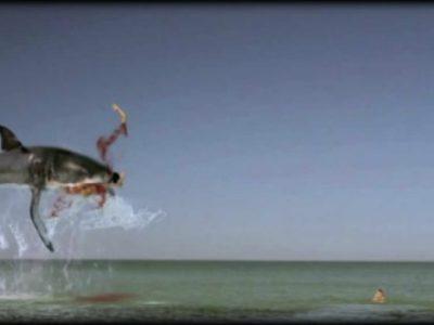 Γυναίκες, Καρχαρίες και Ταμπόν