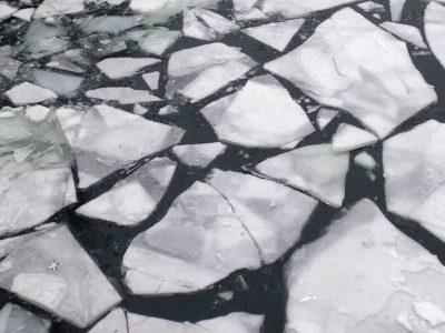 Τι είναι πάλι το polar vortex