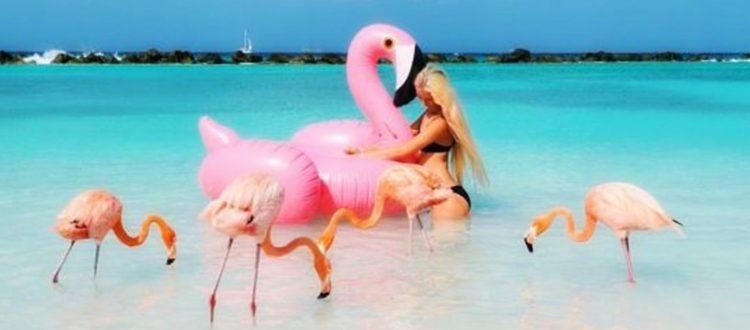 Παραλίες με λίγο κόσμο αλλά πολλά ζώα