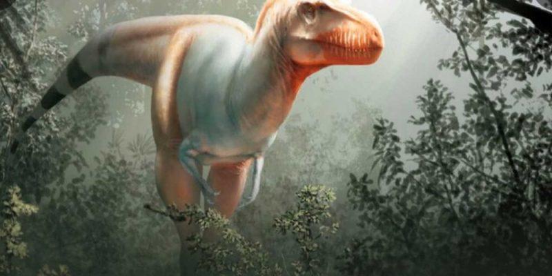 Ένας μακρινός ξάδερφος του T-Rex