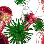 Πώς επιτίθεται ο κορονοϊός στο ανθρώπινο σώμα