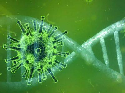 Το γενετικό προφίλ επηρεάζει την σοβαρότητα του Covid-19