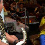 Κατάργηση αγορών άγριων ζώων ζητά ο ΟΗΕ
